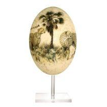 Страусиное яйцо [NE-272] купить