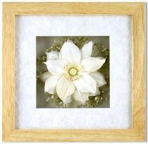 Цветок в рамке [SF-F8X8NAT539/40] купить